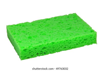 green sponge macro
