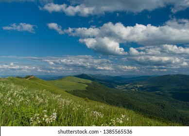 Green spring Bieszczady mountains in Poland