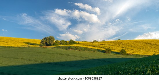 green, spring fields on rolling hills in germany in the light of the setting sun - high resolution panorama