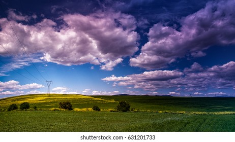 green spring fields under a blue sky with scattered white clouds