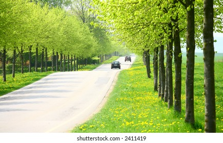 green spring landscape with green  trees in the danish country side  close up of old collection vintage cars traffic  signs in a city close up of old collection vintage cars
