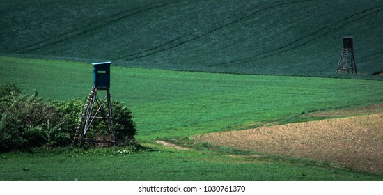 Green spring sown field abstract eco background. Summer hill minimal nature wallpaper. South Moravia, Czech Republic