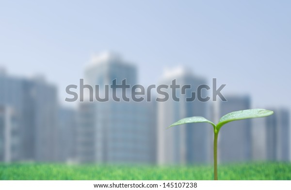 Green sprout and cityscape