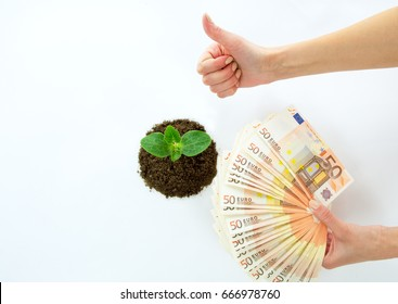 Green sprout in the ground and European money