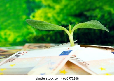 Green sprout on among European money