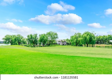 Green square lawn and forest natural landscape in city park