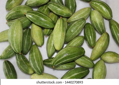 Green striped group of 'pointed gourd' / 'Trichosanthes dioica' display on white background. Popular summer vegetable in India.
