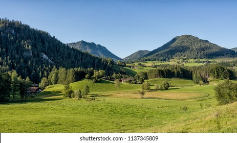 Green summer farmland in the valley surrounded by mountains of the Bavarian Alps, Germany