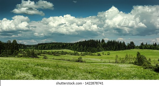green summer field, forest on the horizon and clouds in the sky