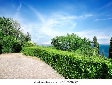 Green summer park in Vorontsov's residence in Crimea