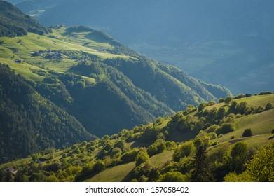 Green sunlit meadows in the Alto Adigen region of Italy