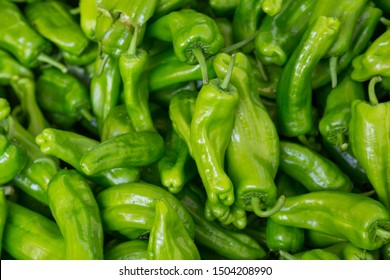 Green sweet pepper closeup background. Fresh vegetables in the market.