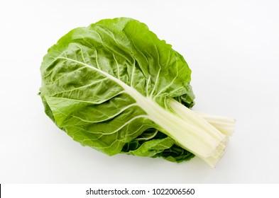 green swiss chard