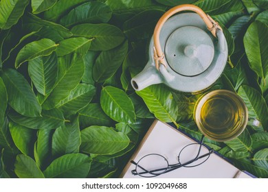 Green tea in cup decorated with green leaves background with book and glasses