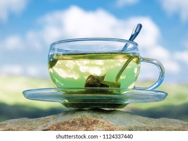 Green tea cup with green tea leaves. Tea time.