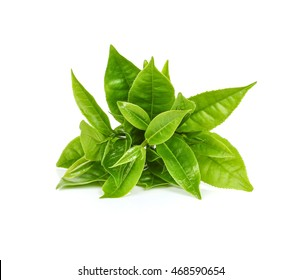 green tea leaf isolated on white