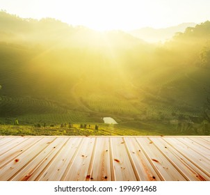 Green tea plantation with wood floor. Fresh green tea plantations in morning and