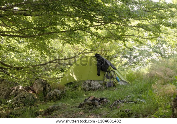 green tent with basic trekking gear under branches of beeches in woods of Nebrodi Park