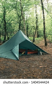 Green tent in forest in spring.