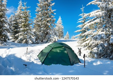 Green tent in snow mountains and winter forest with pine trees