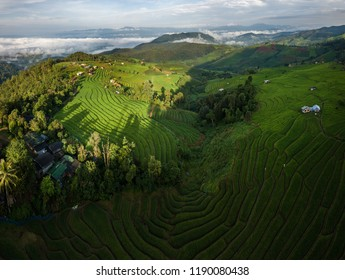 Green Terraced Rice Field in Pa Pong Pieng , Mae Chaem, Chiang Mai Province, Thailand