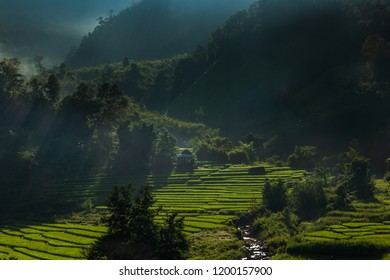 Green Terraces rice field, a beautiful natural beauty on mountain in Nan,Khun Nan  Rice Terraces, Boklua  Nan Province, Thailand