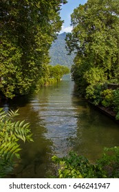 Green thickets on Lake Como. Alps, Italy, Lombardi, Europe.
