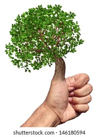 Green thumb and fingers environment and conservation concept with a tree growing from the hand while gesturing OK as a symbol of nature and gardening skills on a white background.