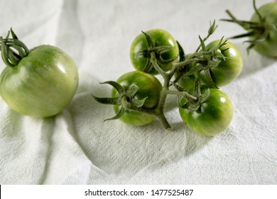 Green tomato branch on white fabric