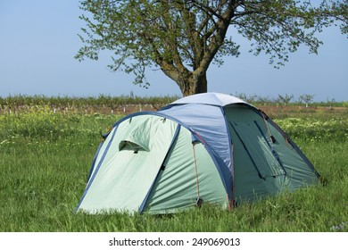 Green tourist tent under the tree stands in the grass in summer time