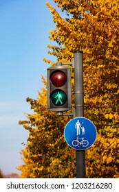 Green Traffic Light for Pedestrians in Finland. In the background there are yellow trees and a blue sky. It's autumn.