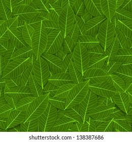 green transparent leaf pattern