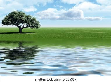 Green tree on a river coast