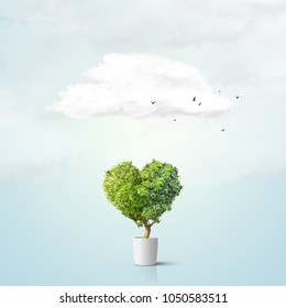 Green tree shaped in heart isolated over blue background
