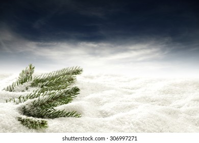 green tree and snow