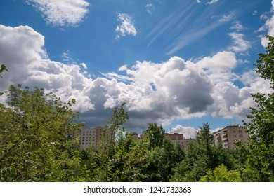 Green trees against white fluffy cumulus clouds in bright blue sky in city