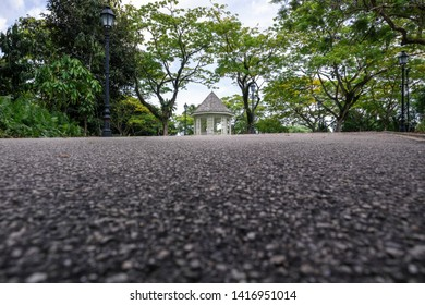 Green trees in Botanic Gardens with the Bandstand surrounded by terraced flower beds and palms. The place is a Singapore's tourist attraction. Worm's eye view photography