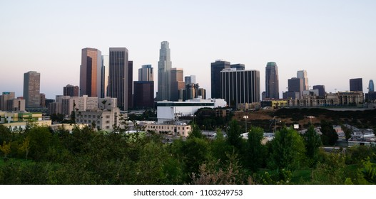 Green trees dominate the foreground with the city skyline of Los Angeles in the background