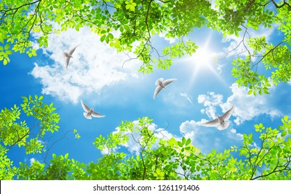 green trees and doves on a sunny day