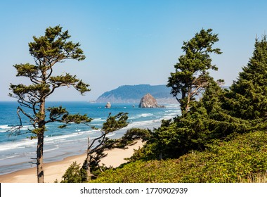Green trees frame the view down the beach of Haystack Rock and Cannon Beach on a sunny day in Oregon