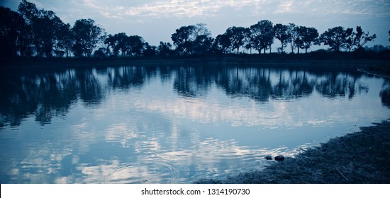 Green trees with reflection in water around a lake in the afternoon