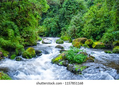 Green trees surround the blurred movement of roaring river through the rocks called the Rio Savegre near San Gerado de Dota, Costa Rica