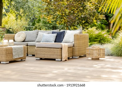 Green trees and wicker garden furniture in the backyard