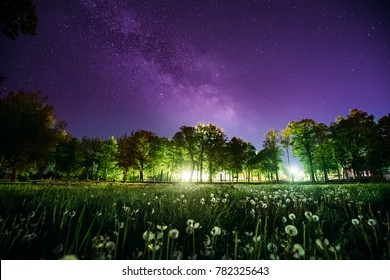 Green Trees Woods In Park Under Night Starry Sky In Violet Color. Landscape With Glowing  Milky Way Stars Over Meadow At Summer Season. View From Eastern Europe At Spring Season.