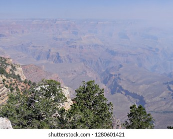 Green treetops overlooking the beautiful land formations of Grand Canyon National Park on a hazy day from wildfire smoke.