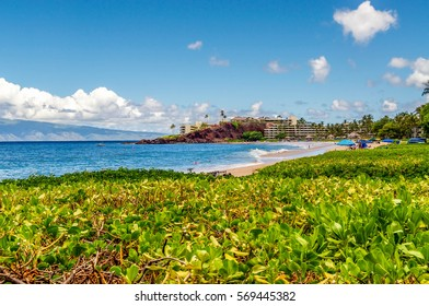 Green tropical vegetation leads to Kaanapali Beach and its Black Rock.
