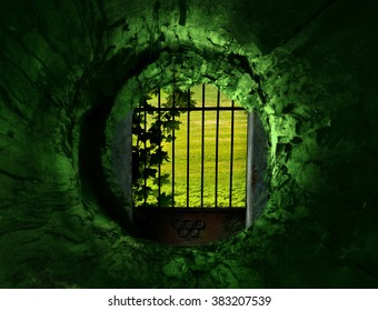 Green tunnel and gates to the secret garden