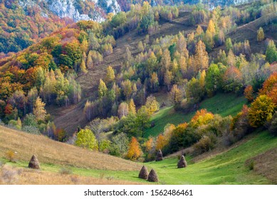 Green valley with haystacks in apuseni mountains,romania