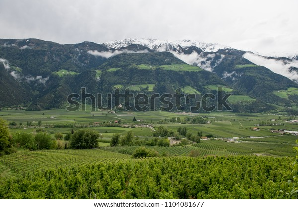Green valley with mountains and agriculture farms in Tyrol