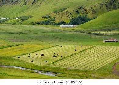 Green valley near Vik, Iceland on overcast summer day,  beautiful farm scenery